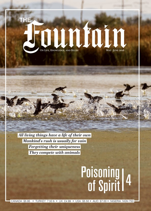 The Fountain Issue 123 (May - June 2018)