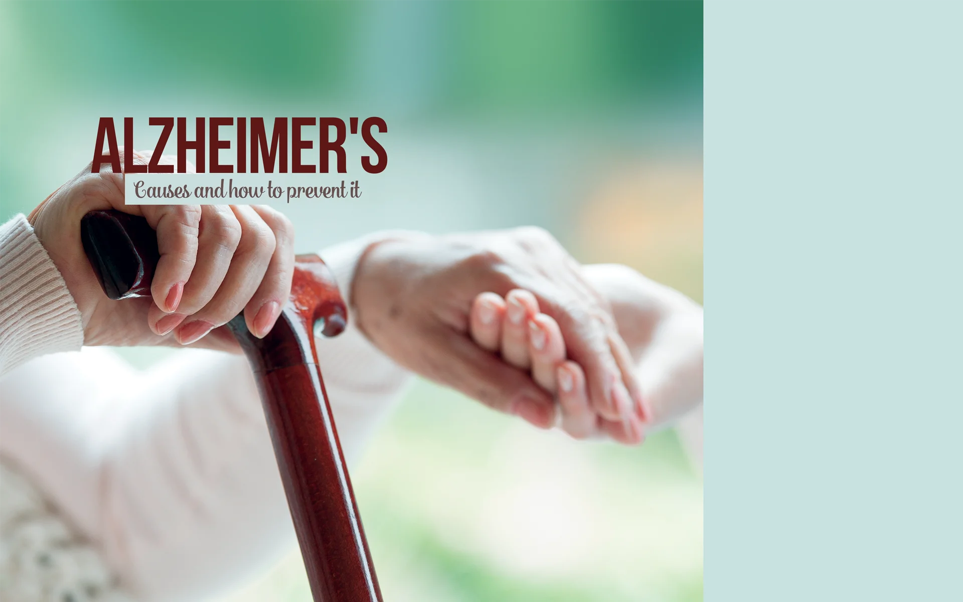 Alzheimer's: Causes and How to Prevent It