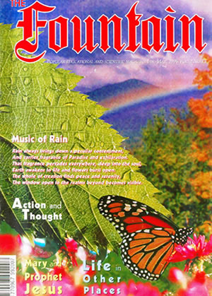 Issue 13 (January - March 1996)