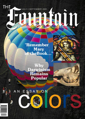 Issue 35 (July - September 2001)