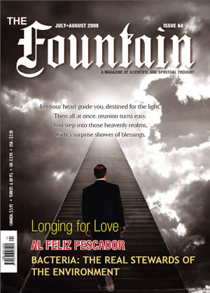 Issue 64 (July - August 2008)