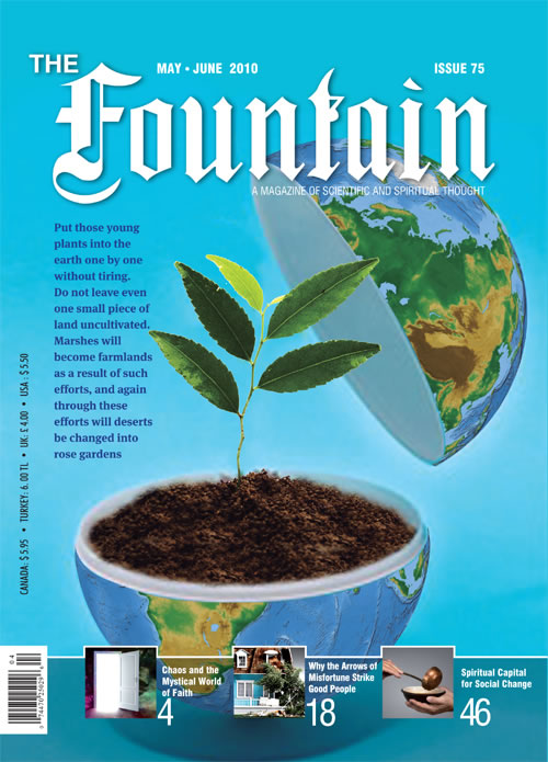 Issue 75 (May - June 2010)