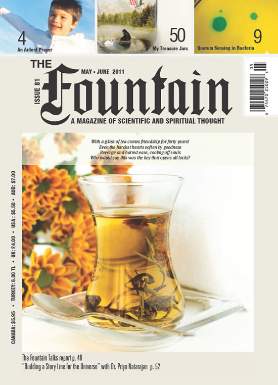 Issue 81 (May - June 2011)